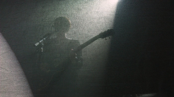 The XX playing live